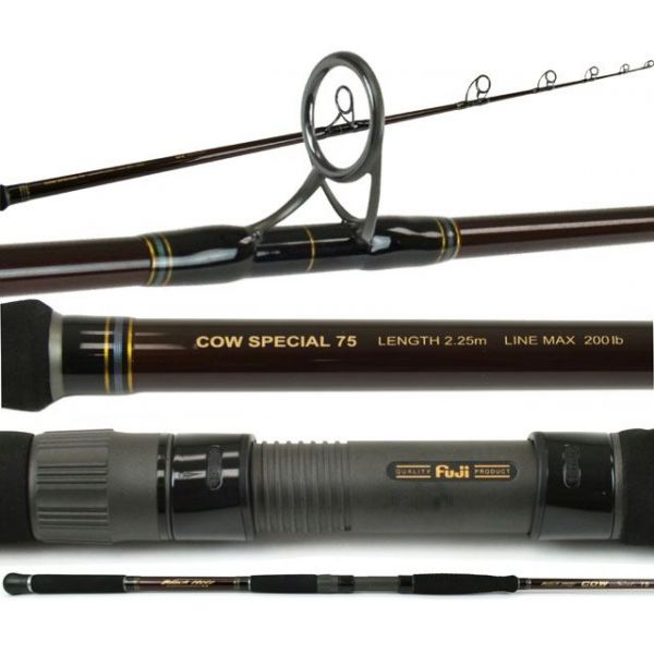 Black Hole Cow Special II 75 Popping Rod