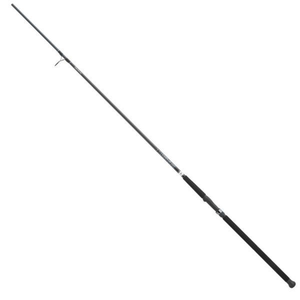 Daiwa ECA1202HFS Emcast-A Surf Rod