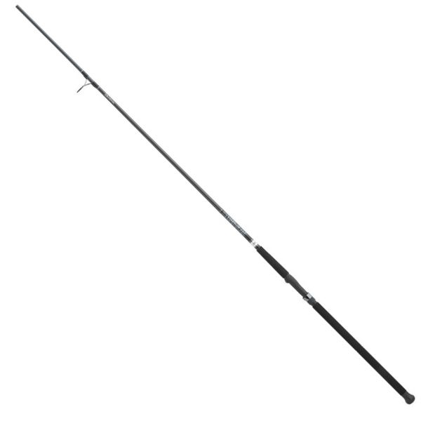Daiwa ECA1202MHFS Emcast-A Surf Rod