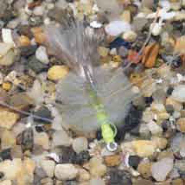 Enrico Puglisi EP Crab Grey Saltwater Fly