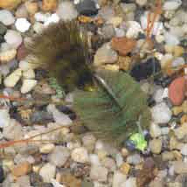 Enrico Puglisi EP Crab Olive Green Saltwater Fly