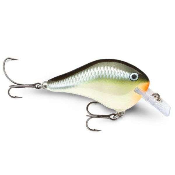 Rapala Dives-To Fat Series Lures