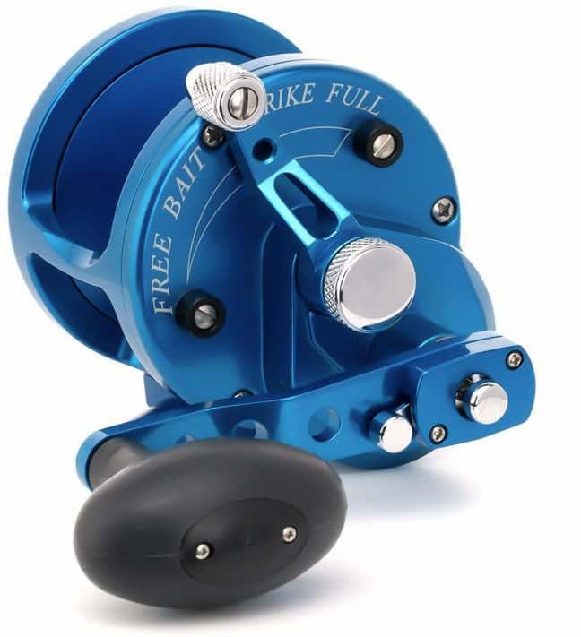 Avet Reels JX 6/3 BLUE