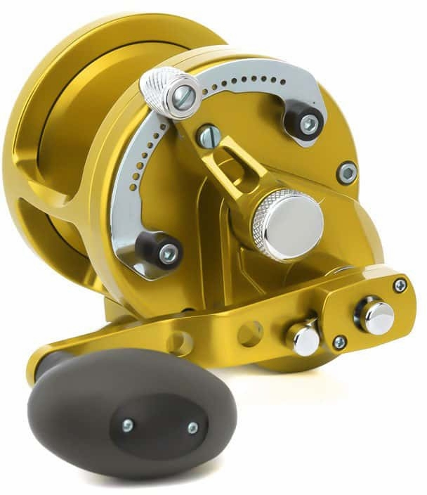 Avet Reels JX 6/3 MC RAPTOR GOLD