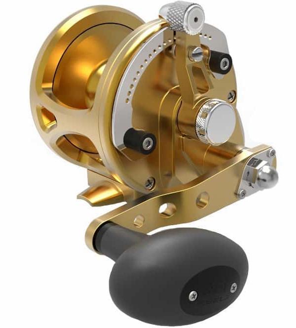 Avet JX G2 6.0 Single Speed Reel Gold -  Avet Reels