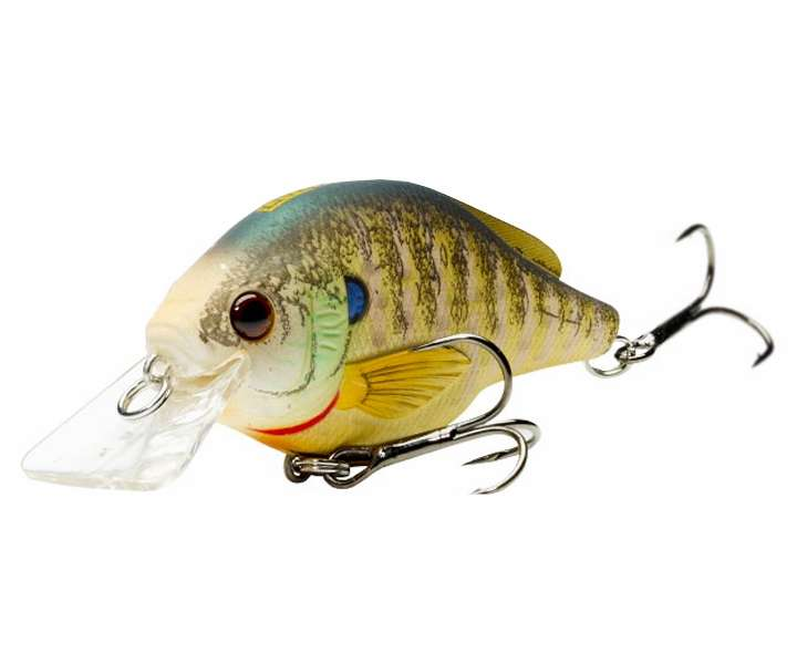Livetarget lures bluegill squarebill bgss60s tackledirect for Bluegill fishing bait