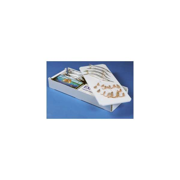 Max Bait Tray Cutting Board 23.5in MAX-0015