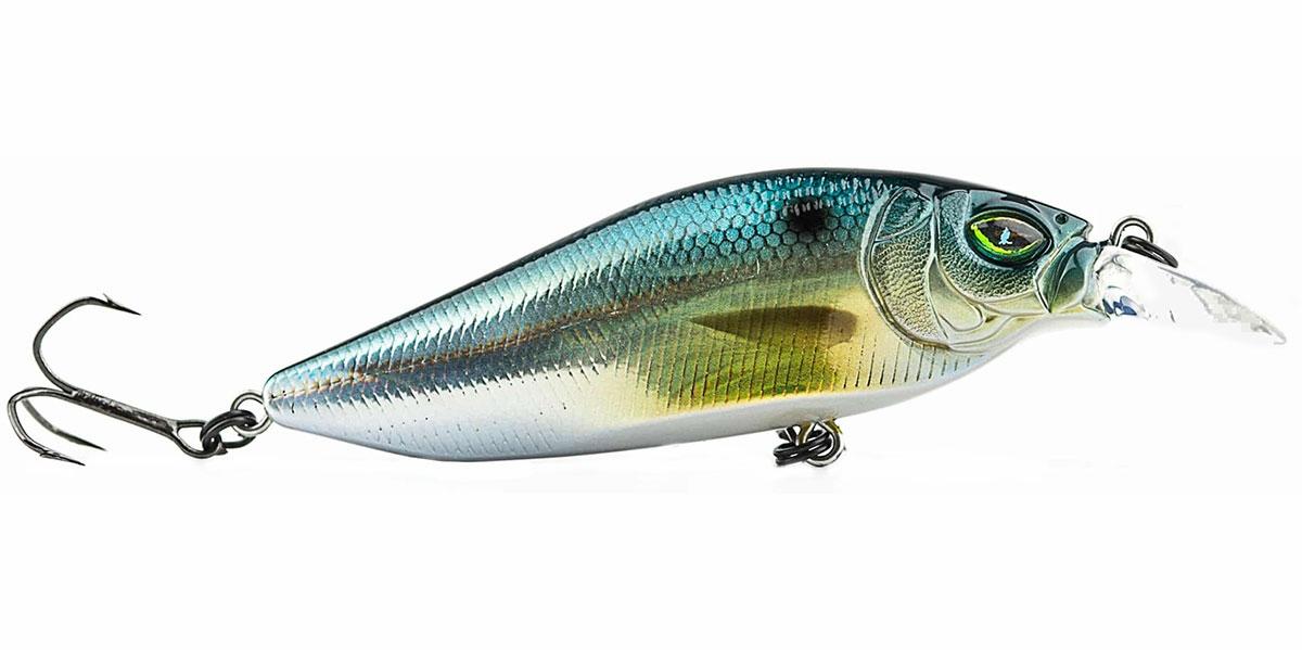 Megabass flap slap tackledirect for Freshwater fishing gear