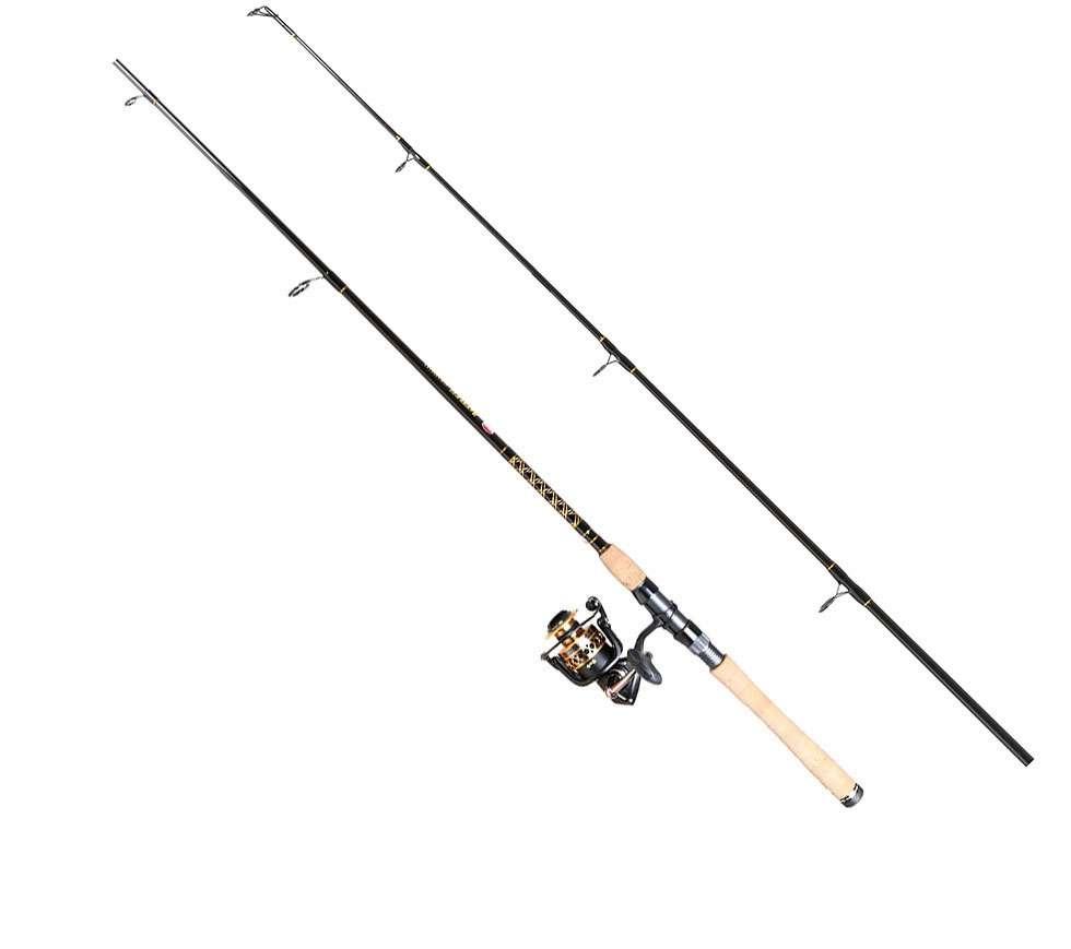 Penn btlii4000701m battle ii spinning combo for Penn fishing combos