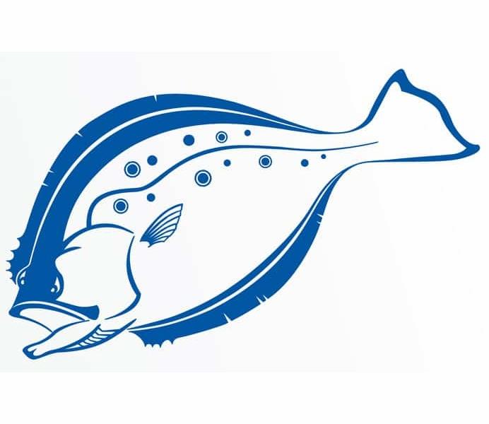 FLOUNDER FISH FISHING BAIT GRAPHIC DECAL STICKER CAR VINYL WALL