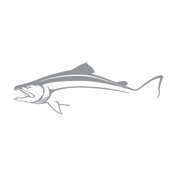 Steelfin Salmon Decal - Small Silver STL-0018-4
