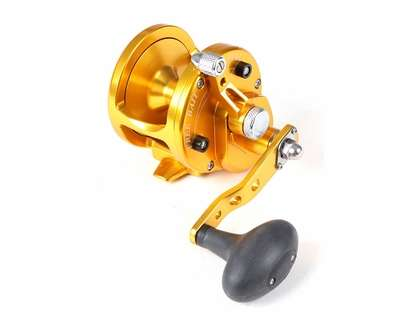 Avet JX 60 Single Speed Sailfish Cam Reel - Gold