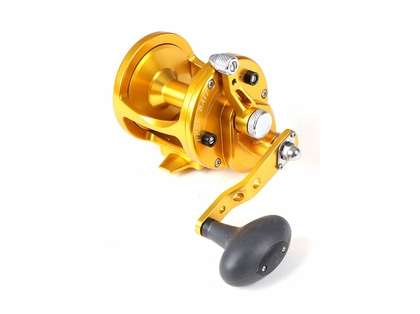Avet LX 6.0 Single Speed Sailfish Cam Reel - Gold