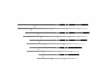 Daiwa BFSF1002MHRS Beefstick-SF Spinning Surf Rod