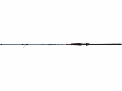 Daiwa Team Daiwa Surf Spinning Rods
