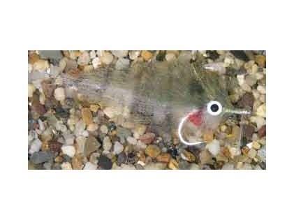 Enrico Puglisi Mangrove Baitfish Pinfish Saltwater Fly