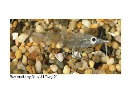 Enrico Puglisi Minnow Bay Anchovy Saltwater Fly