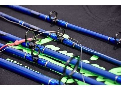 Lamiglas BW5850C Blue Water Series Conventional Rod - 5 ft. 8 in.