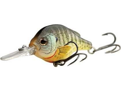 LIVETARGET Lures Bluegill Crankbait BG57S Shallow Dive 2.25in