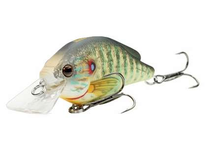 LIVETARGET Lures PSS60S Pumpkinseed Squarebill Shallow Dive 2 3/8