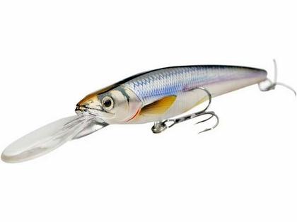 LIVETARGET Rainbow Smelt Jerkbait Deep Dive 3-5/8in Silver/Bronze