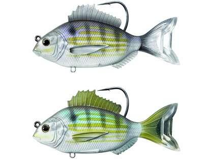 LIVETARGET Pinfish Swimbait Lures - 3 1/2 in.