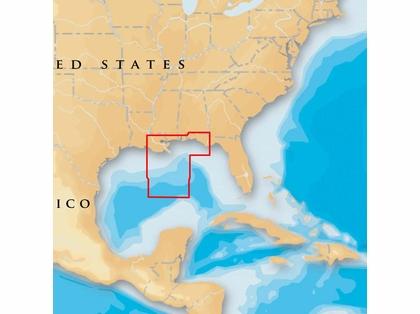Navionics MSD/651P+ Platinum+ - Gulf of Mexico Central - microSD/SD