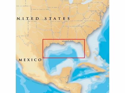Navionics MSD/907P+ Platinum+ - Gulf Of Mexico - microSD/SD