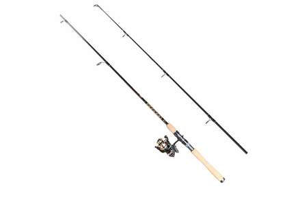 Penn BTLII2500701ML Battle II Spinning Combo