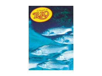 Rio Striped Bass Knotless Leaders