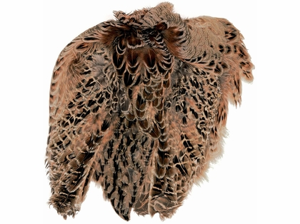 Superfly Ringneck Pheasant Hen Skins