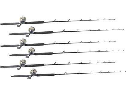 TackleDirect Platinum Hook / Shimano Tyrnos TYR30II White Marlin Package w/ 6 Combos